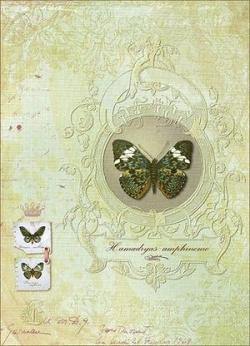 """Декупажная карта """"Королева бабочек"""""""